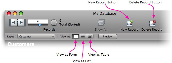 The standard Status toolbar in FileMaker Pro 10